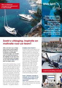 http://www.duidelijkeverkoop.nl/images/uploads/Flyer-WS-def.pdf